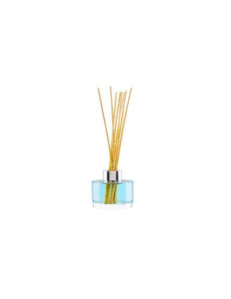 Box of Reed Diffuser Bottles